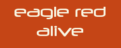 EAGLE RED ALIVE - Golden Retriever Zucht - Field Trial Linie