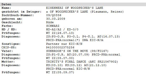 Daten Eisenherz of Woodpecker's Lane